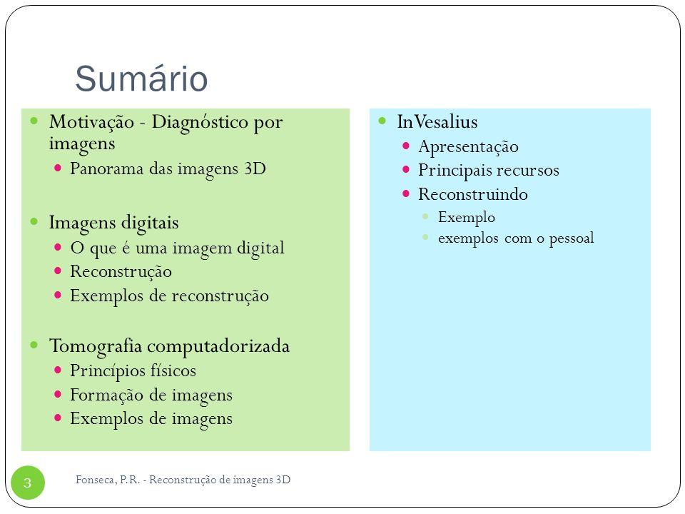 Sumário Motivação - Diagnóstico por imagens Panorama das imagens 3D Imagens digitais O que é uma imagem digital Reconstrução Exemplos de reconstrução