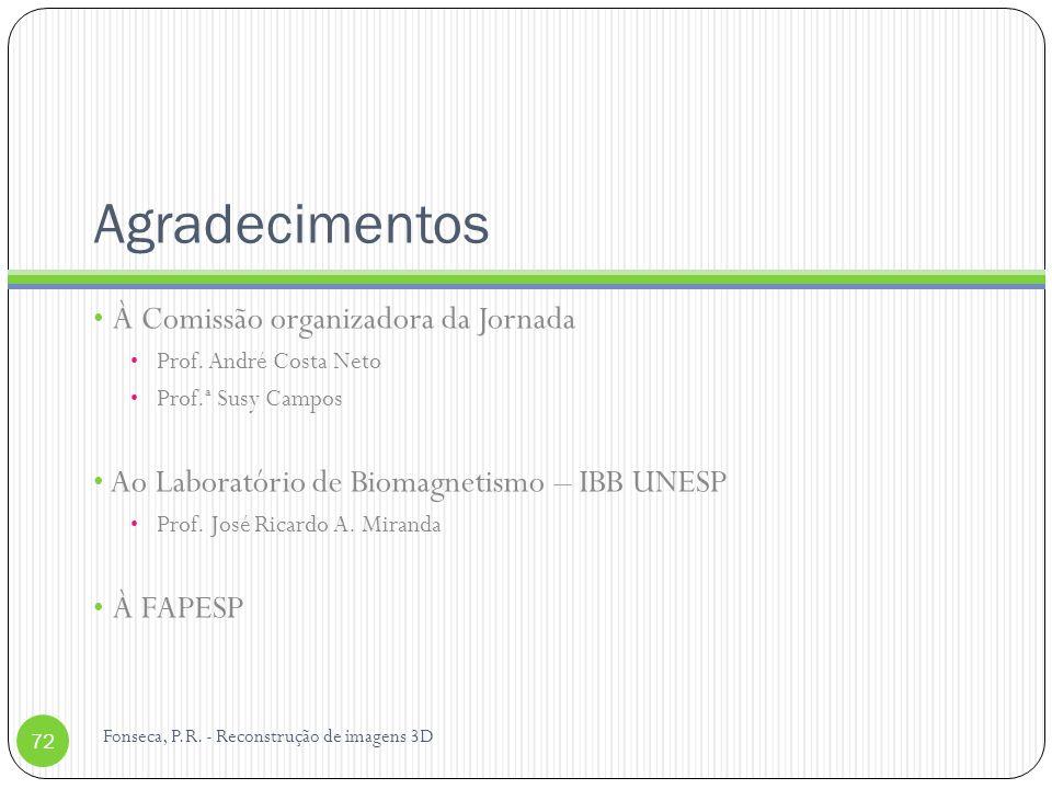 Agradecimentos À Comissão organizadora da Jornada Prof. André Costa Neto Prof.ª Susy Campos Ao Laboratório de Biomagnetismo – IBB UNESP Prof. José Ric