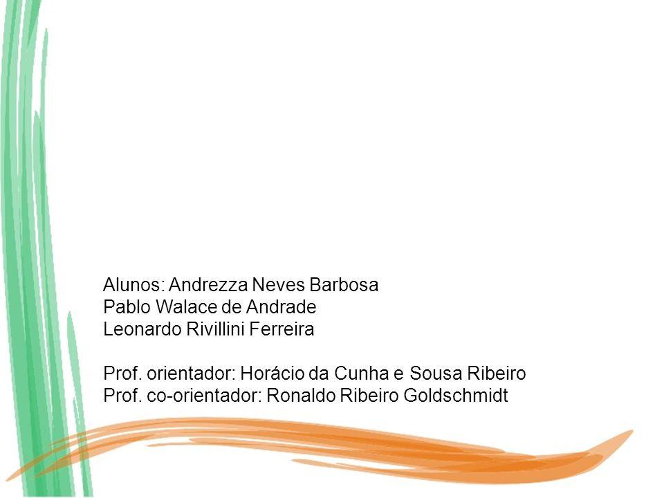 Alunos: Andrezza Neves Barbosa Pablo Walace de Andrade Leonardo Rivillini Ferreira Prof. orientador: Horácio da Cunha e Sousa Ribeiro Prof. co-orienta