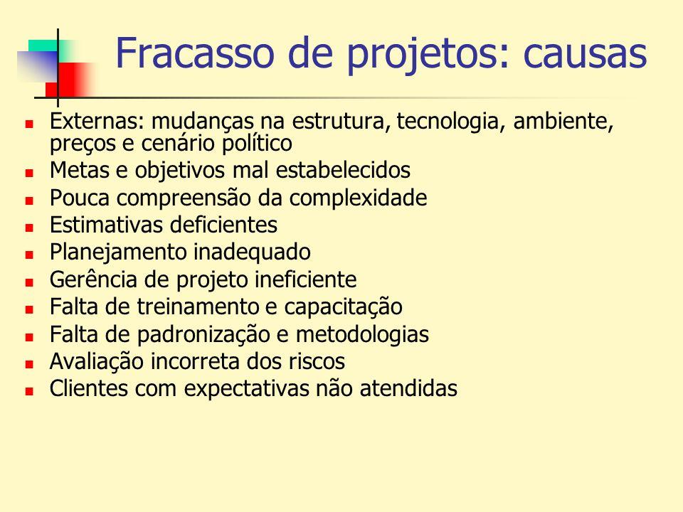 Fracasso de projetos: causas Externas: mudanças na estrutura, tecnologia, ambiente, preços e cenário político Metas e objetivos mal estabelecidos Pouc