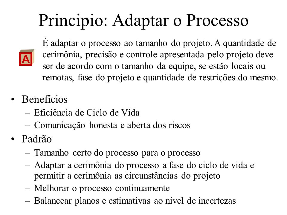 Principio: Adaptar o Processo Benefícios –Eficiência de Ciclo de Vida –Comunicação honesta e aberta dos riscos Padrão –Tamanho certo do processo para