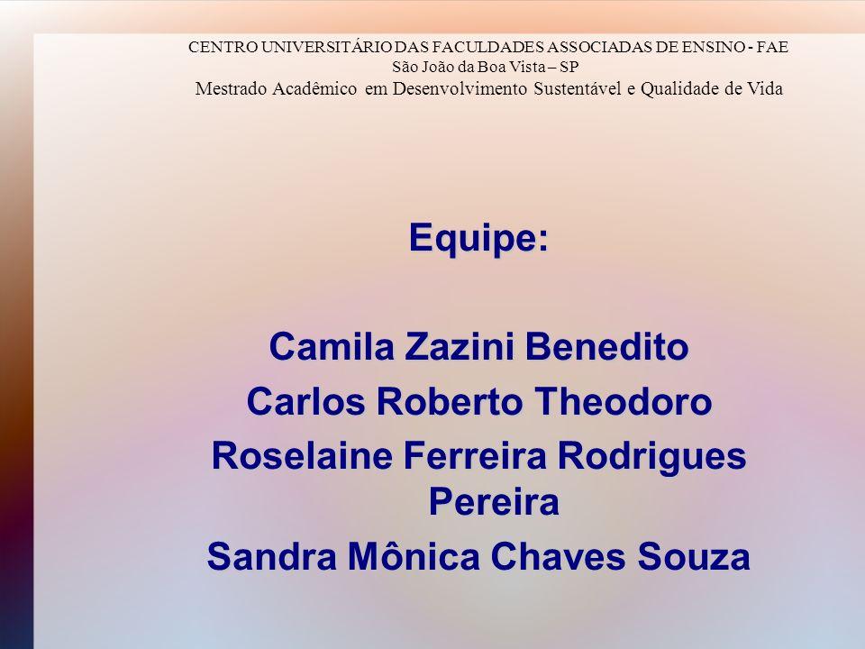 Equipe: Camila Zazini Benedito Carlos Roberto Theodoro Roselaine Ferreira Rodrigues Pereira Sandra Mônica Chaves Souza CENTRO UNIVERSITÁRIO DAS FACULD