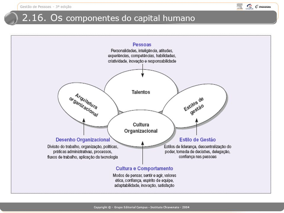 Copyright © - Grupo Editorial Campus – Instituto Chiavenato - 2004 2.16. Os componentes do capital humano