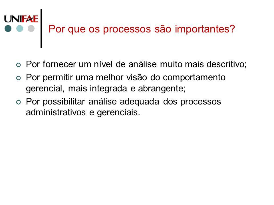 Por que os processos são importantes? Por fornecer um nível de análise muito mais descritivo; Por permitir uma melhor visão do comportamento gerencial