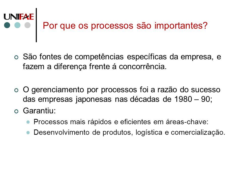 Por que os processos são importantes? São fontes de competências específicas da empresa, e fazem a diferença frente á concorrência. O gerenciamento po