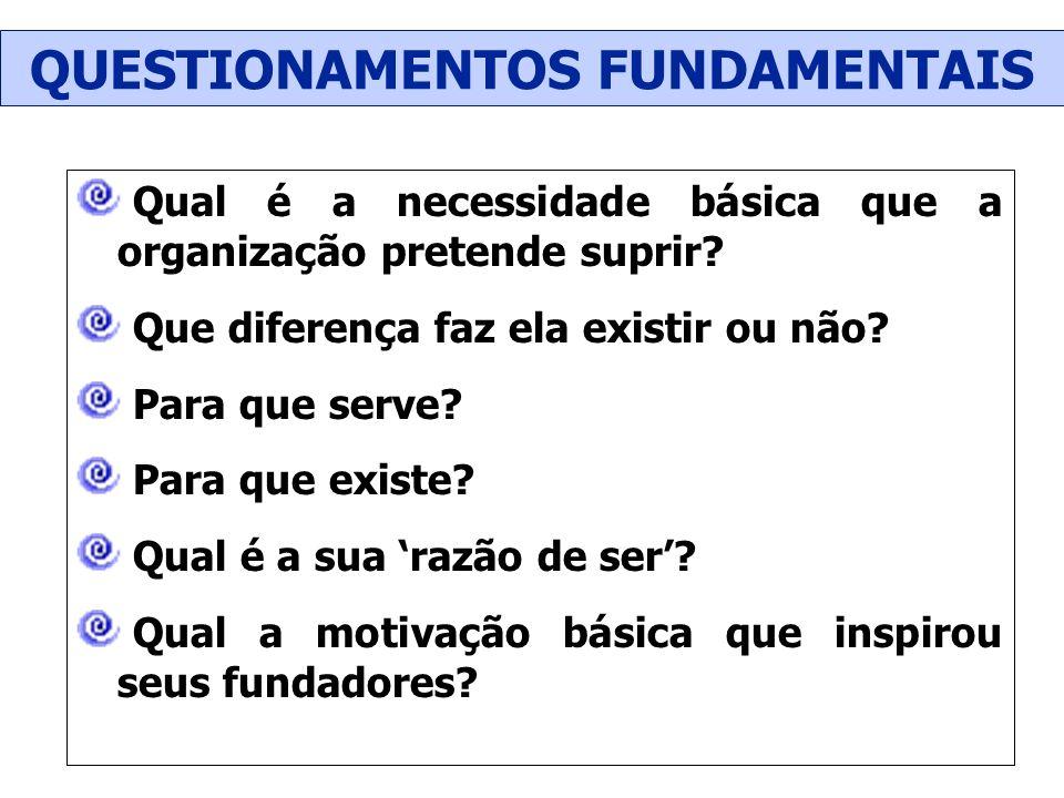 Qual é a necessidade básica que a organização pretende suprir? Que diferença faz ela existir ou não? Para que serve? Para que existe? Qual é a sua raz