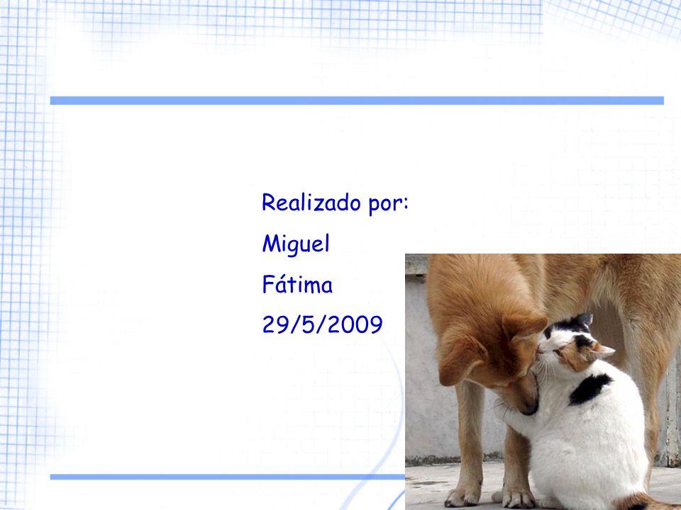 3 Realizado por: Miguel Fátima 29/5/2009
