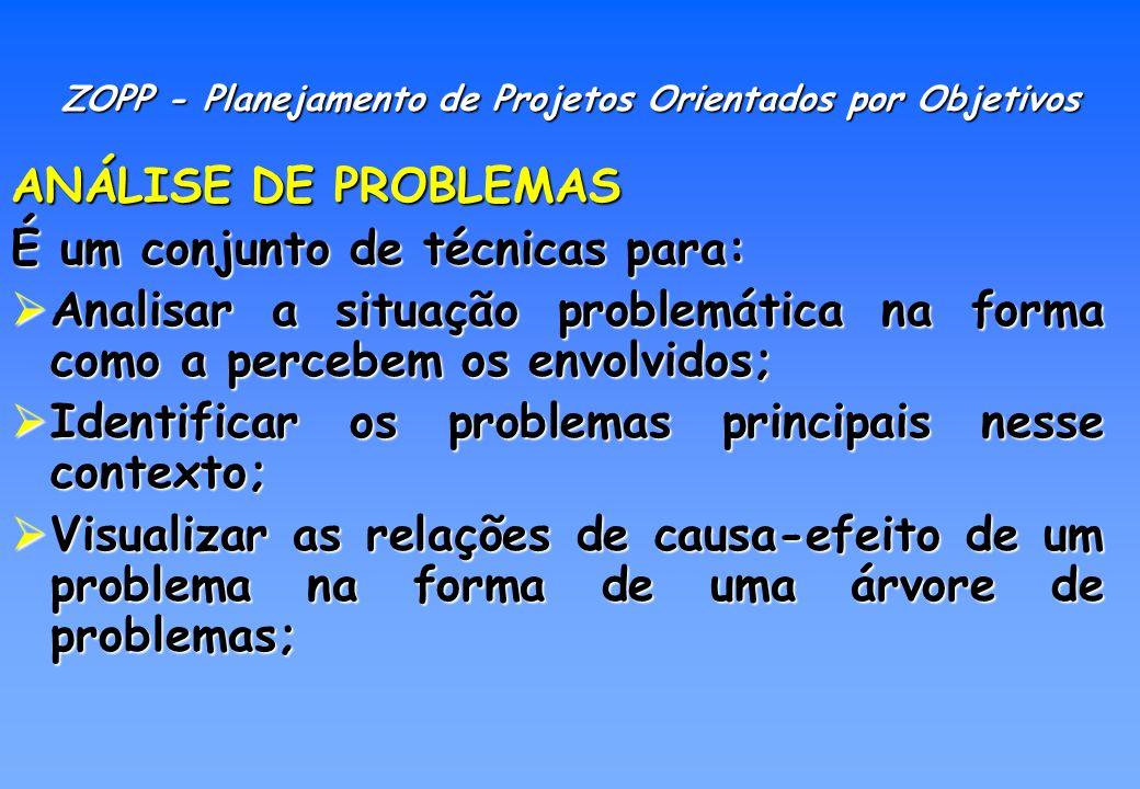 ANÁLISE DE PROBLEMAS Mostrar as inter-relações entre os problemas; Mostrar as inter-relações entre os problemas; Mostrar o caminho para solucionar os problemas; Mostrar o caminho para solucionar os problemas; Analisar a situação existente em relação a uma problemática determinada.