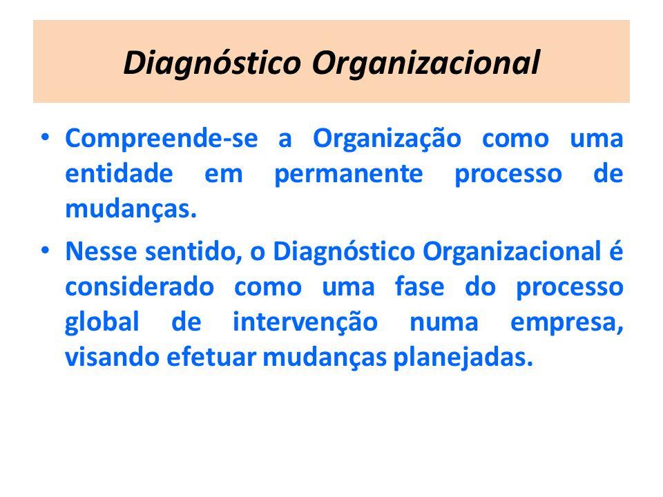 Diagnóstico Organizacional Compreende-se a Organização como uma entidade em permanente processo de mudanças. Nesse sentido, o Diagnóstico Organizacion