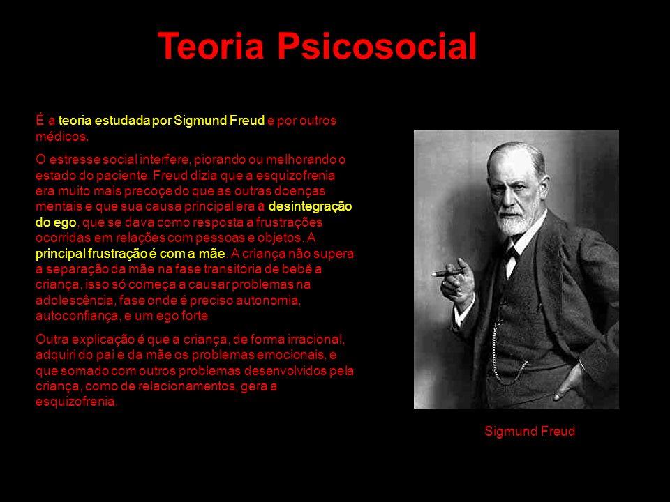É a teoria estudada por Sigmund Freud e por outros médicos. O estresse social interfere, piorando ou melhorando o estado do paciente. Freud dizia que