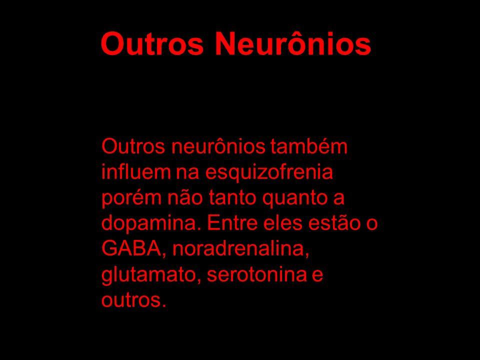 Outros neurônios também influem na esquizofrenia porém não tanto quanto a dopamina. Entre eles estão o GABA, noradrenalina, glutamato, serotonina e ou