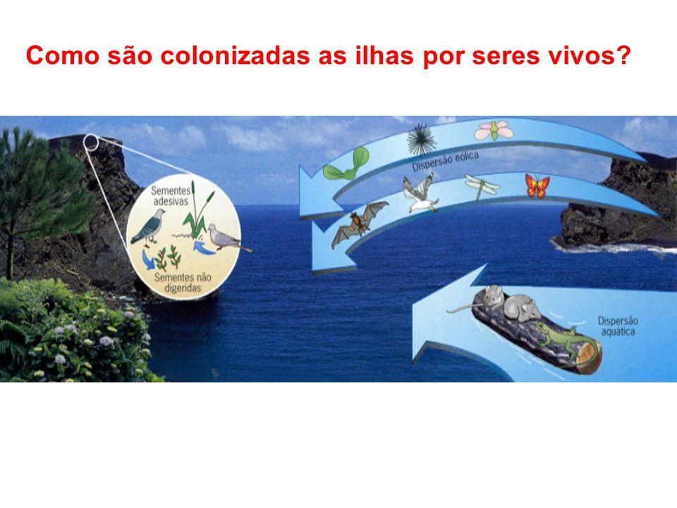 Como são colonizadas as ilhas por seres vivos?