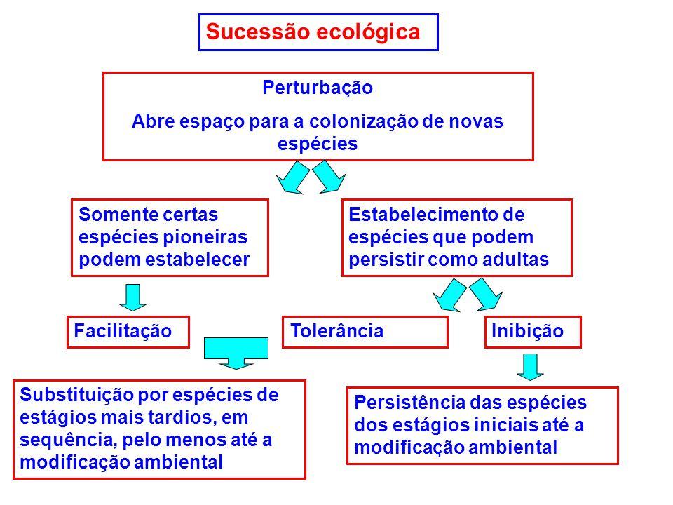 Sucessão ecológica Perturbação Abre espaço para a colonização de novas espécies Somente certas espécies pioneiras podem estabelecer Estabelecimento de