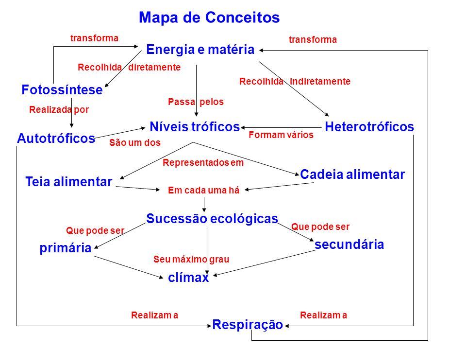 Mapa de Conceitos Energia e matéria Fotossíntese Autotróficos Níveis tróficosHeterotróficos Cadeia alimentar Teia alimentar Sucessão ecológicas primár