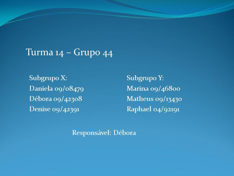 Subgrupo X: Daniela 09/08479 Débora 09/42308 Denise 09/42391 Turma 14 – Grupo 44 Subgrupo Y: Marina 09/46800 Matheus 09/13430 Raphael 04/92191 Responsável: Débora