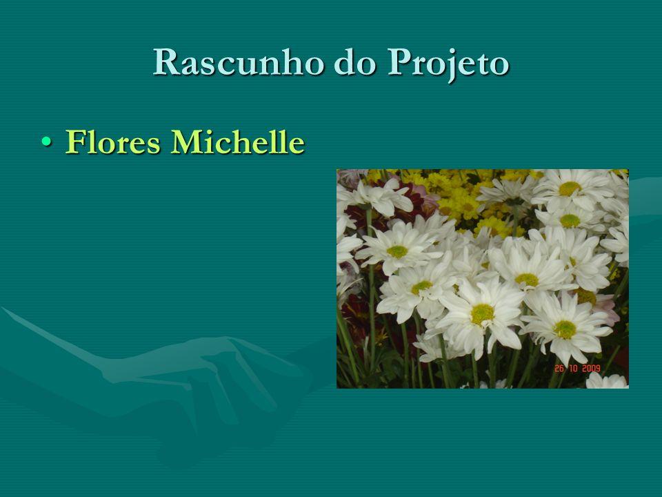 Rascunho do Projeto Flores MichelleFlores Michelle
