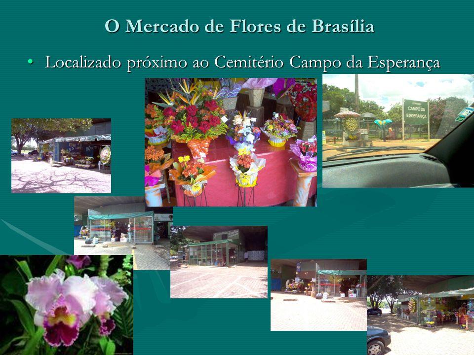Uma comparação... De modo a fazer um estudo comparativo para responder tais questões, o grupo foi ao comércio de flores próximo ao Cemitério Campo da