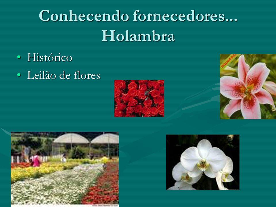 Conhecendo fornecedores... Holambra FUNDAÇÃO HOLAMBRA é uma cooperativa de produção agropecuária, de responsabilidade limitada, fundada em 1960, com s