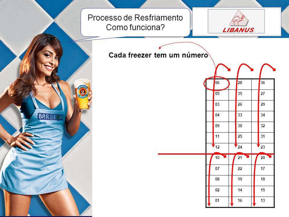 062836 053527 032629 043334 093032 112531 122423 102120 072217 081918 021415 011613 Cada freezer tem um número Processo de Resfriamento Como funciona?