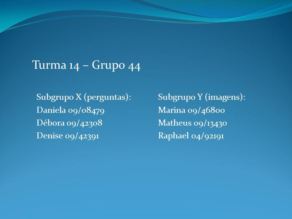 Subgrupo X (perguntas): Daniela 09/08479 Débora 09/42308 Denise 09/42391 Turma 14 – Grupo 44 Subgrupo Y (imagens): Marina 09/46800 Matheus 09/13430 Ra