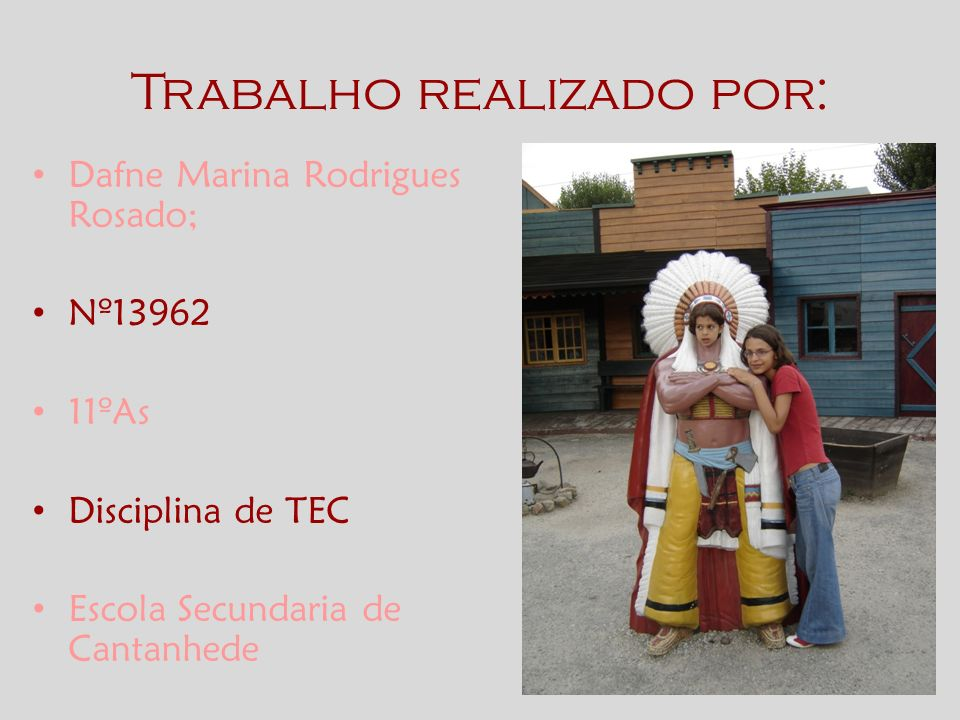 Trabalho realizado por: Dafne Marina Rodrigues Rosado; Nº13962 11ºAs Disciplina de TEC Escola Secundaria de Cantanhede