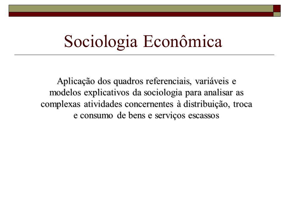 Sociologia Econômica Aplicação dos quadros referenciais, variáveis e modelos explicativos da sociologia para analisar as complexas atividades concerne