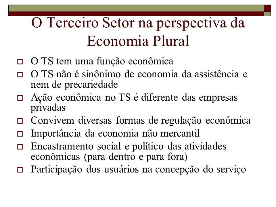 O Terceiro Setor na perspectiva da Economia Plural O TS tem uma função econômica O TS não é sinônimo de economia da assistência e nem de precariedade