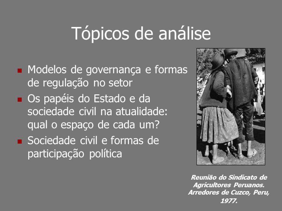Tópicos de análise Modelos de governança e formas de regulação no setor Os papéis do Estado e da sociedade civil na atualidade: qual o espaço de cada