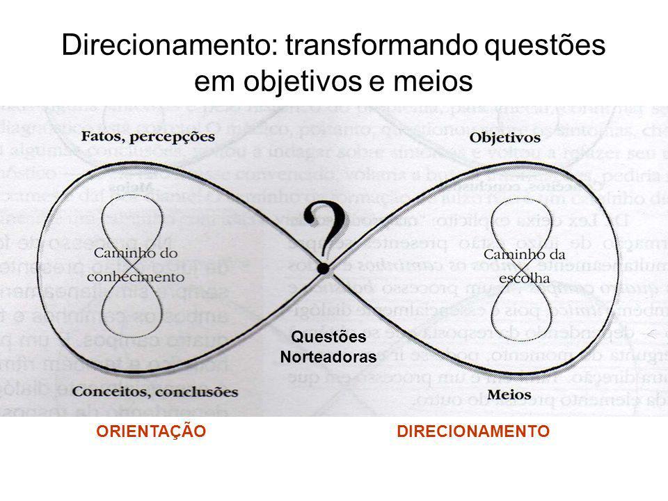 Direcionamento: transformando questões em objetivos e meios Questões Norteadoras ORIENTAÇÃODIRECIONAMENTO