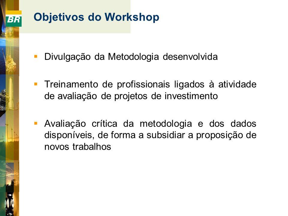 Objetivos do Workshop Divulgação da Metodologia desenvolvida Treinamento de profissionais ligados à atividade de avaliação de projetos de investimento