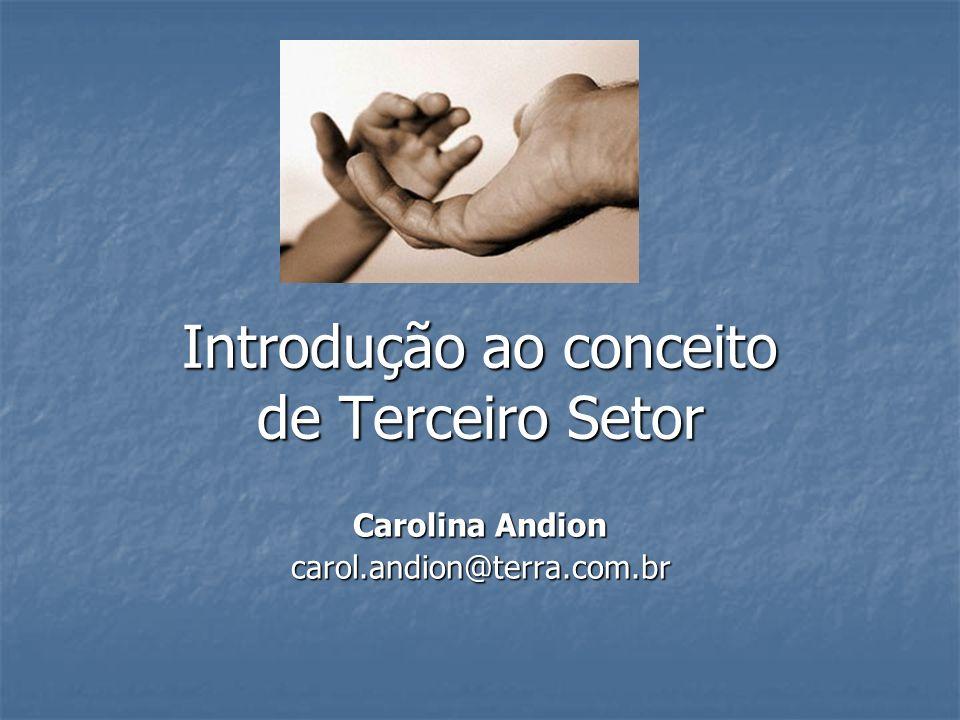 Introdução ao conceito de Terceiro Setor Carolina Andion carol.andion@terra.com.br