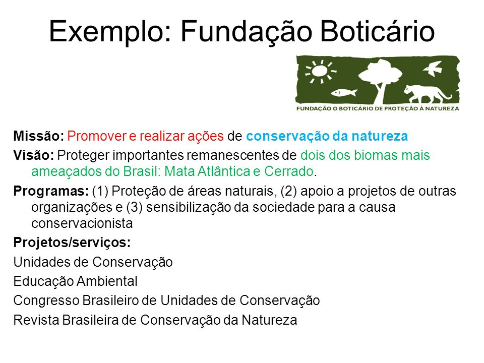 Exemplo: Fundação Boticário Missão: Promover e realizar ações de conservação da natureza Visão: Proteger importantes remanescentes de dois dos biomas mais ameaçados do Brasil: Mata Atlântica e Cerrado.