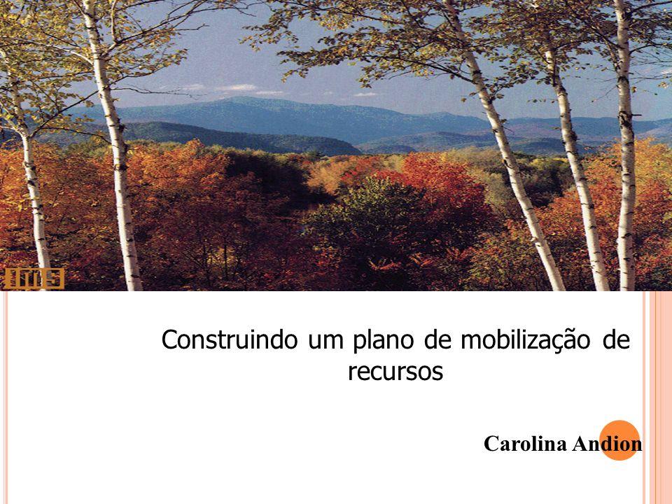 Construindo um plano de mobilização de recursos Carolina Andion