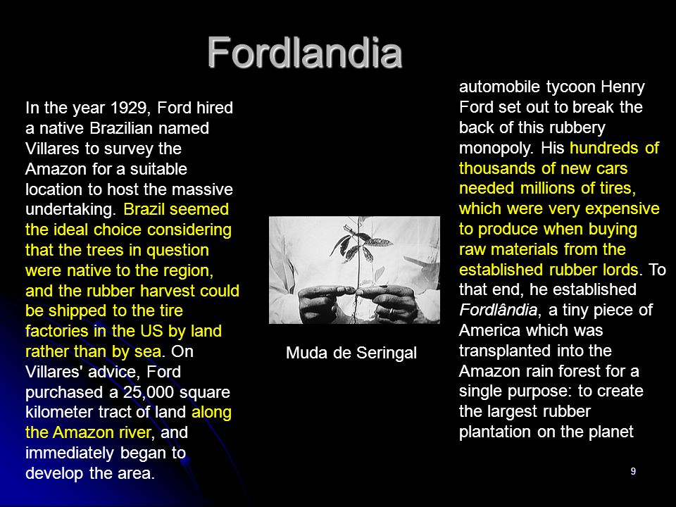 9 Fordlandia Muda de Seringal In the year 1929, Ford hired a native Brazilian named Villares to survey the Amazon for a suitable location to host the