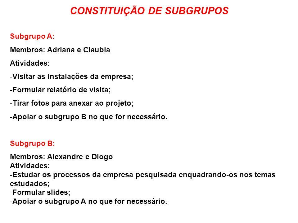 Subgrupo A: Membros: Adriana e Claubia Atividades: -Visitar as instalações da empresa; -Formular relatório de visita; -Tirar fotos para anexar ao proj