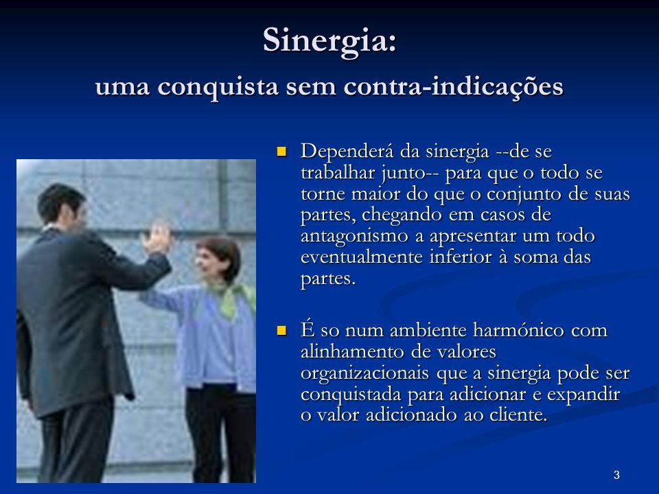 3 Sinergia: uma conquista sem contra-indicações Dependerá da sinergia --de se trabalhar junto-- para que o todo se torne maior do que o conjunto de su
