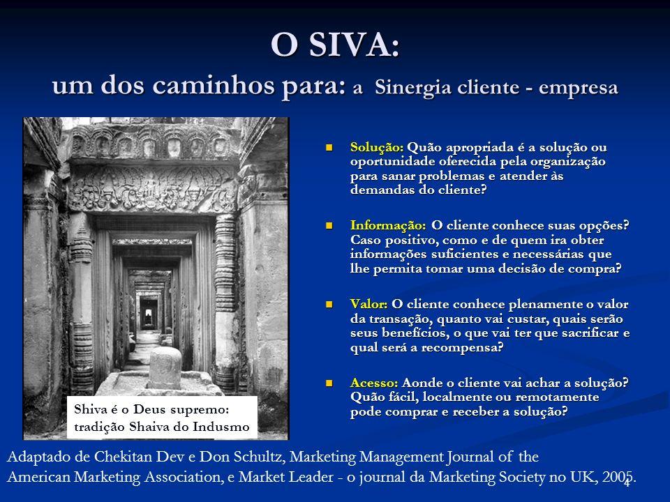 4 O SIVA: um dos caminhos para: a Sinergia cliente - empresa Solução: Quão apropriada é a solução ou oportunidade oferecida pela organização para sana