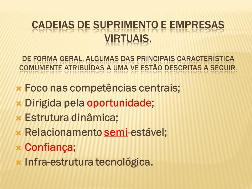Foco nas competências centrais; Dirigida pela oportunidade; Estrutura dinâmica; Relacionamento semi-estável; Confiança; Infra-estrutura tecnológica.