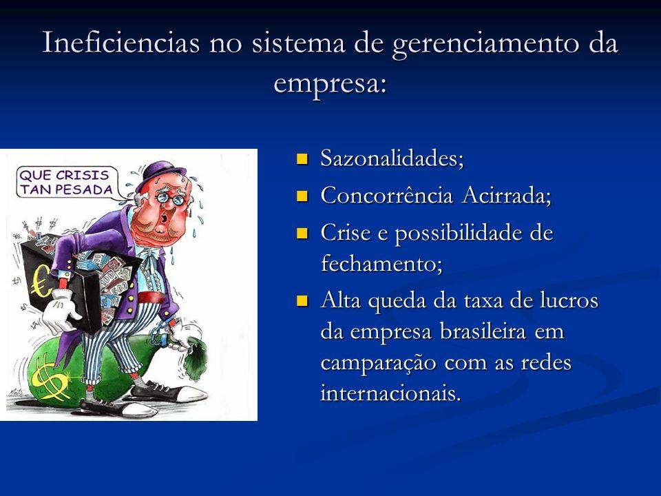 Ineficiencias no sistema de gerenciamento da empresa: Sazonalidades; Sazonalidades; Concorrência Acirrada; Concorrência Acirrada; Crise e possibilidad