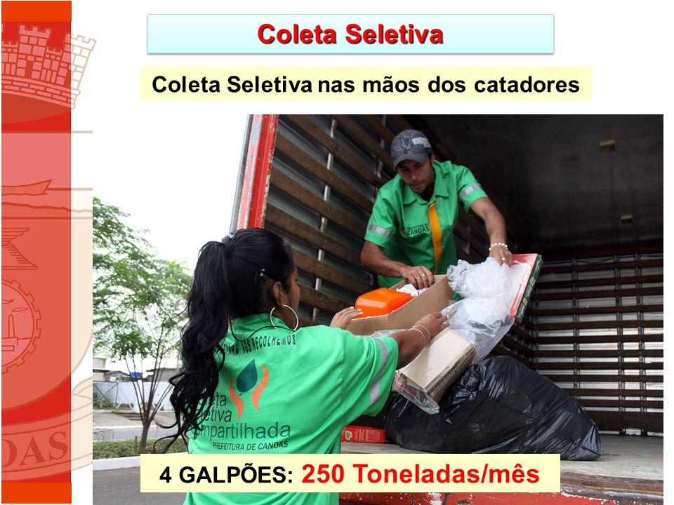 Coleta Seletiva 4 GALPÕES: 250 Toneladas/mês Coleta Seletiva nas mãos dos catadores