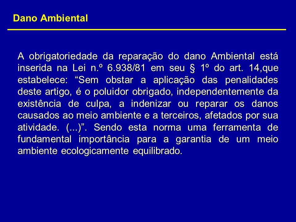 Dano Ambiental A obrigatoriedade da reparação do dano Ambiental está inserida na Lei n.º 6.938/81 em seu § 1º do art. 14,que estabelece: Sem obstar a