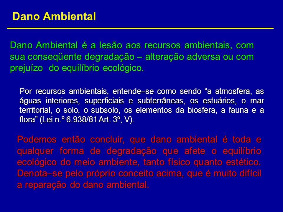 Dano Ambiental Dano Ambiental é a lesão aos recursos ambientais, com sua conseqüente degradação – alteração adversa ou com prejuízo do equilíbrio ecol