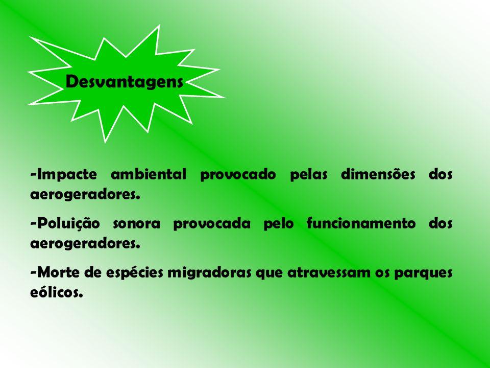 Desvantagens -Impacte ambiental provocado pelas dimensões dos aerogeradores. -Poluição sonora provocada pelo funcionamento dos aerogeradores. -Morte d