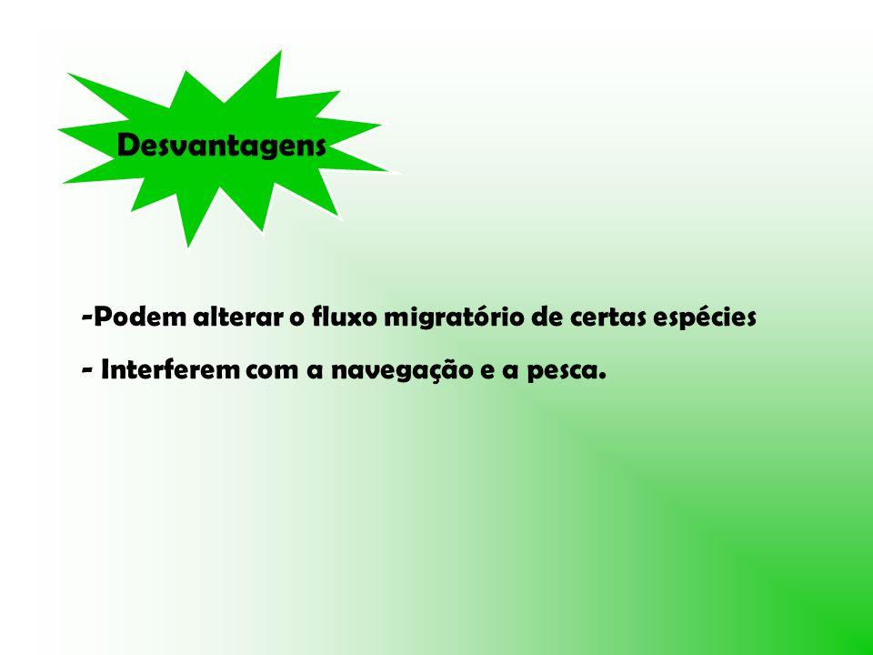 Desvantagens -Podem alterar o fluxo migratório de certas espécies - Interferem com a navegação e a pesca.