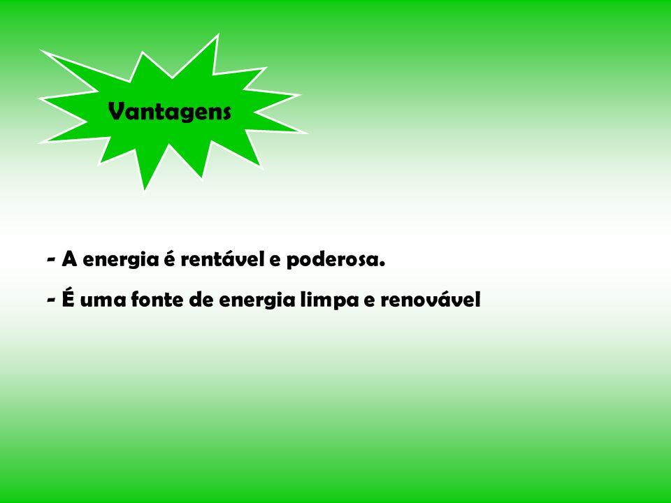 Vantagens - A energia é rentável e poderosa. - É uma fonte de energia limpa e renovável