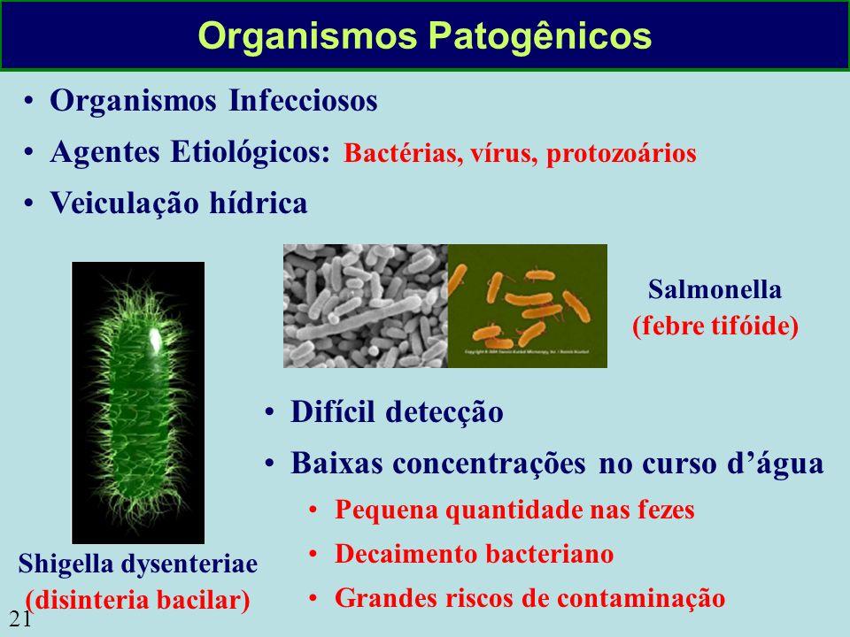 21 Organismos Patogênicos Organismos Infecciosos Agentes Etiológicos: Bactérias, vírus, protozoários Veiculação hídrica Shigella dysenteriae (disinter