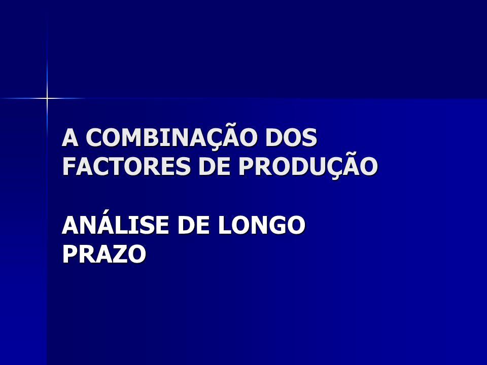A COMBINAÇÃO DOS FACTORES DE PRODUÇÃO ANÁLISE DE LONGO PRAZO