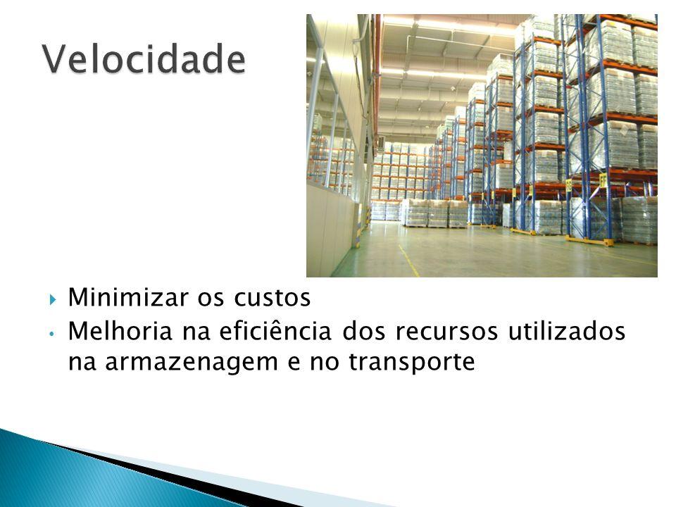 Minimizar os custos Melhoria na eficiência dos recursos utilizados na armazenagem e no transporte