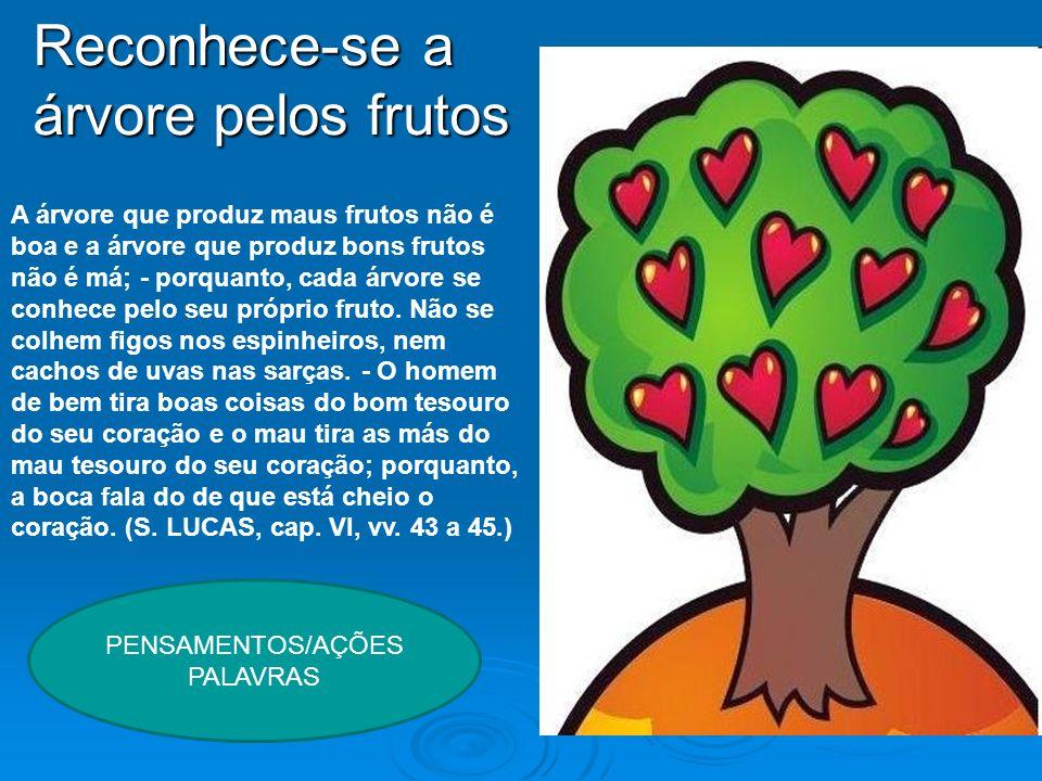 A árvore que produz maus frutos não é boa e a árvore que produz bons frutos não é má; - porquanto, cada árvore se conhece pelo seu próprio fruto. Não