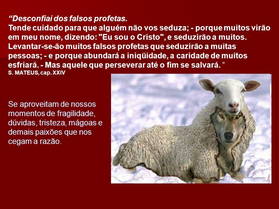 Desconfiai dos falsos profetas. Tende cuidado para que alguém não vos seduza; - porque muitos virão em meu nome, dizendo: